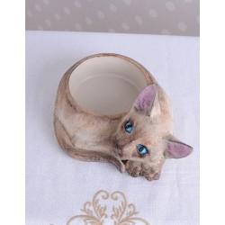 Caseta pisica din rasini